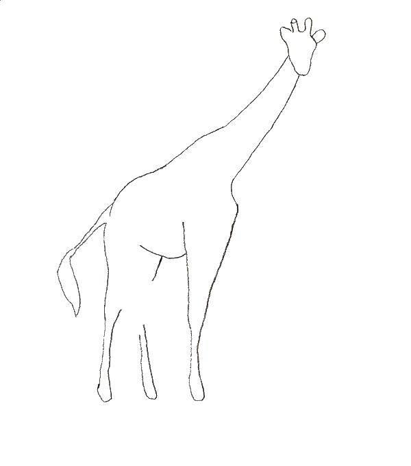 Контур большого жирафа Контуры - жираф.