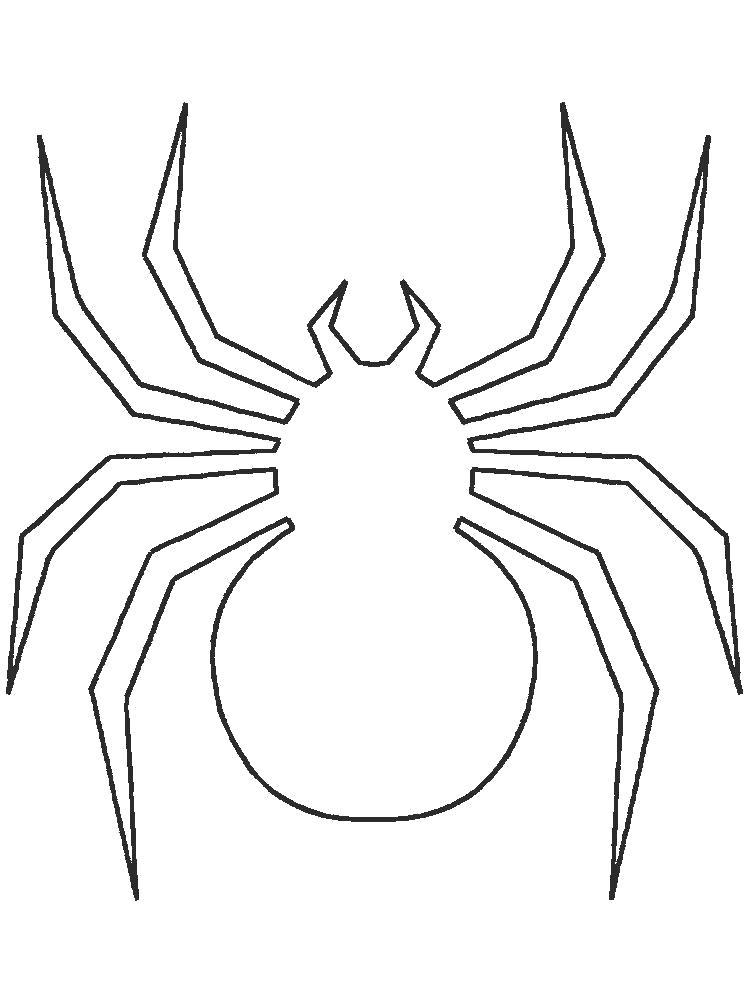 Раскраски контуры насекомые Раскраски контуры насекомых, пауки, бабочки, контуры для вырезания