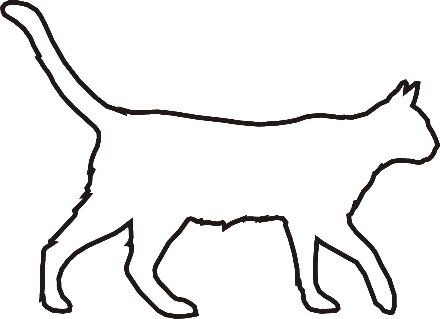 Кошка Качественный широкий контур кошки.