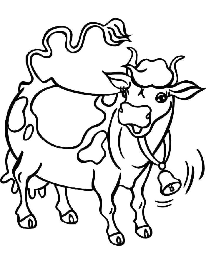 раскраски корова