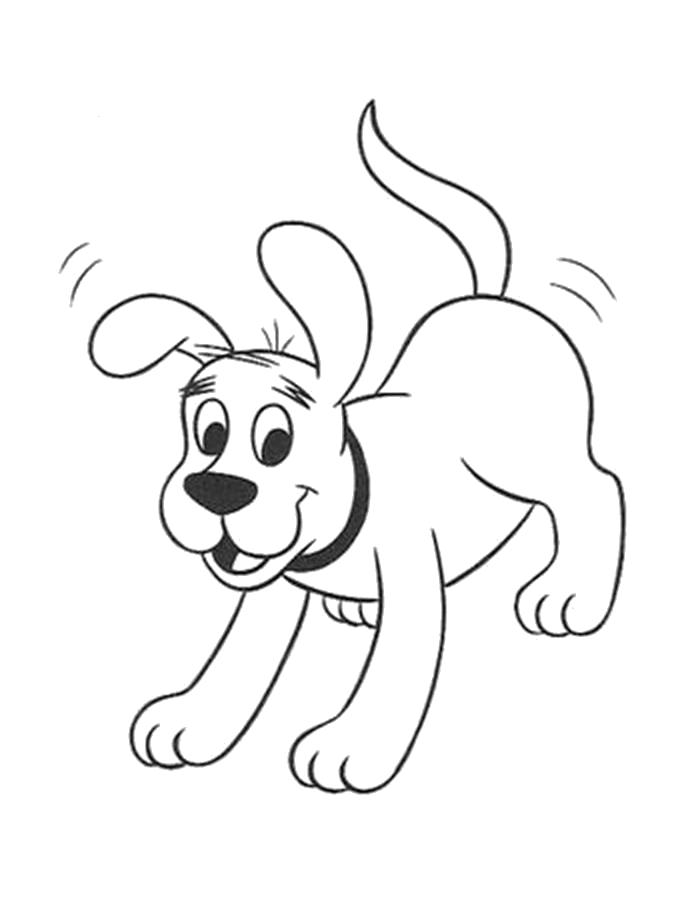 раскраски собака