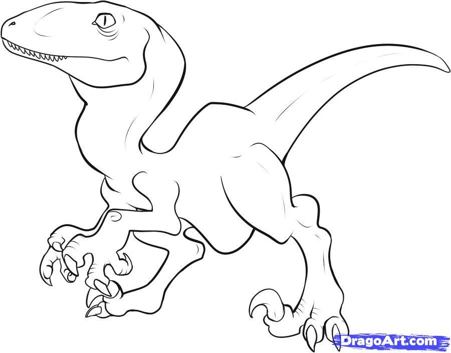 Диноазавр раптор Скачать и распечатать раскраску динозавра раптора