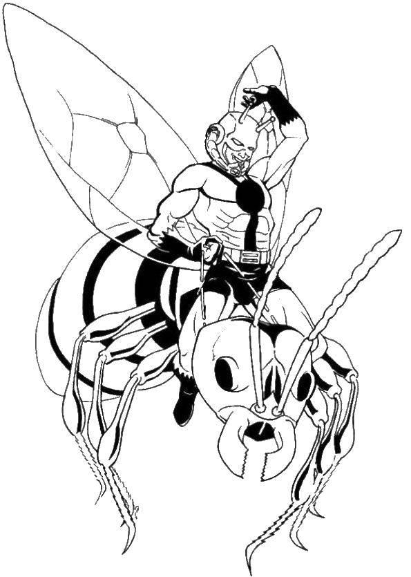 раскраски с человеком муравьем для детей
