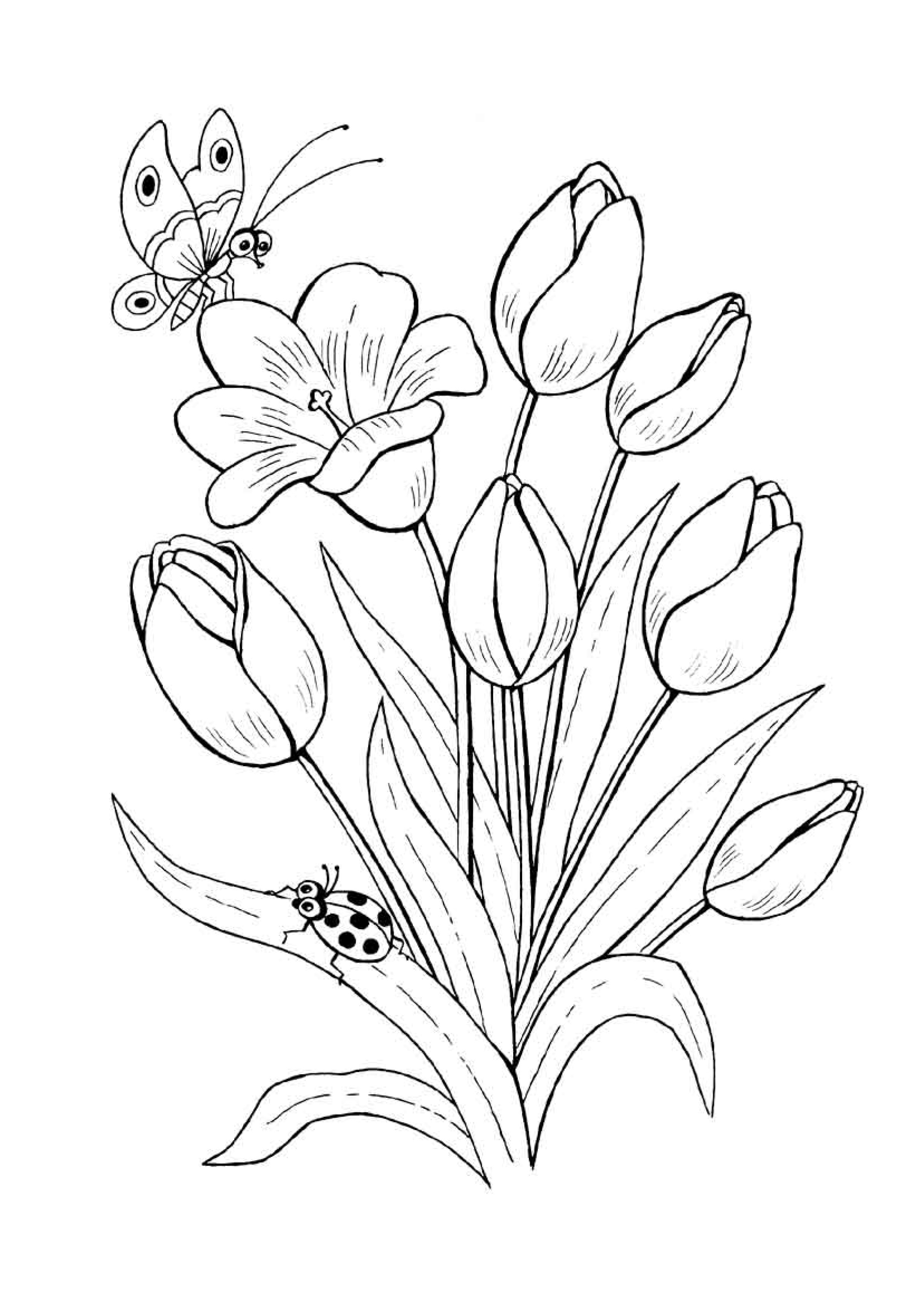 раскраски для детей на тему цветы