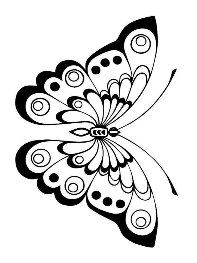 раскраски с бабочками для взрослых