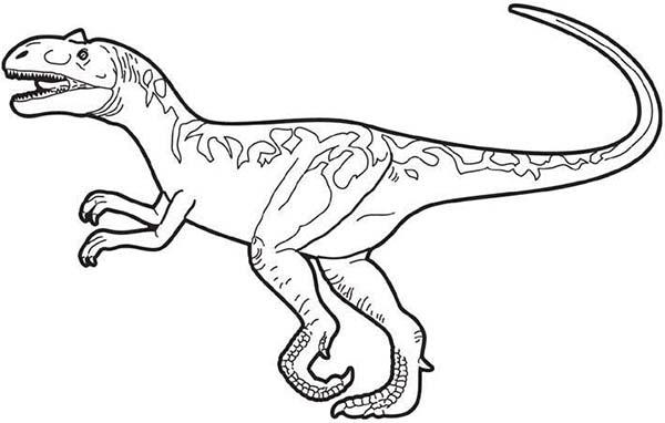 Раскраски с динозаврами аллозавры Аллозавр скачать и распечатать раскраску бесплатно.