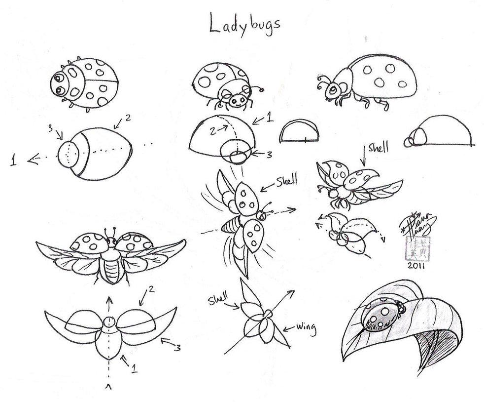 раскраски на тему рисуем насекомых