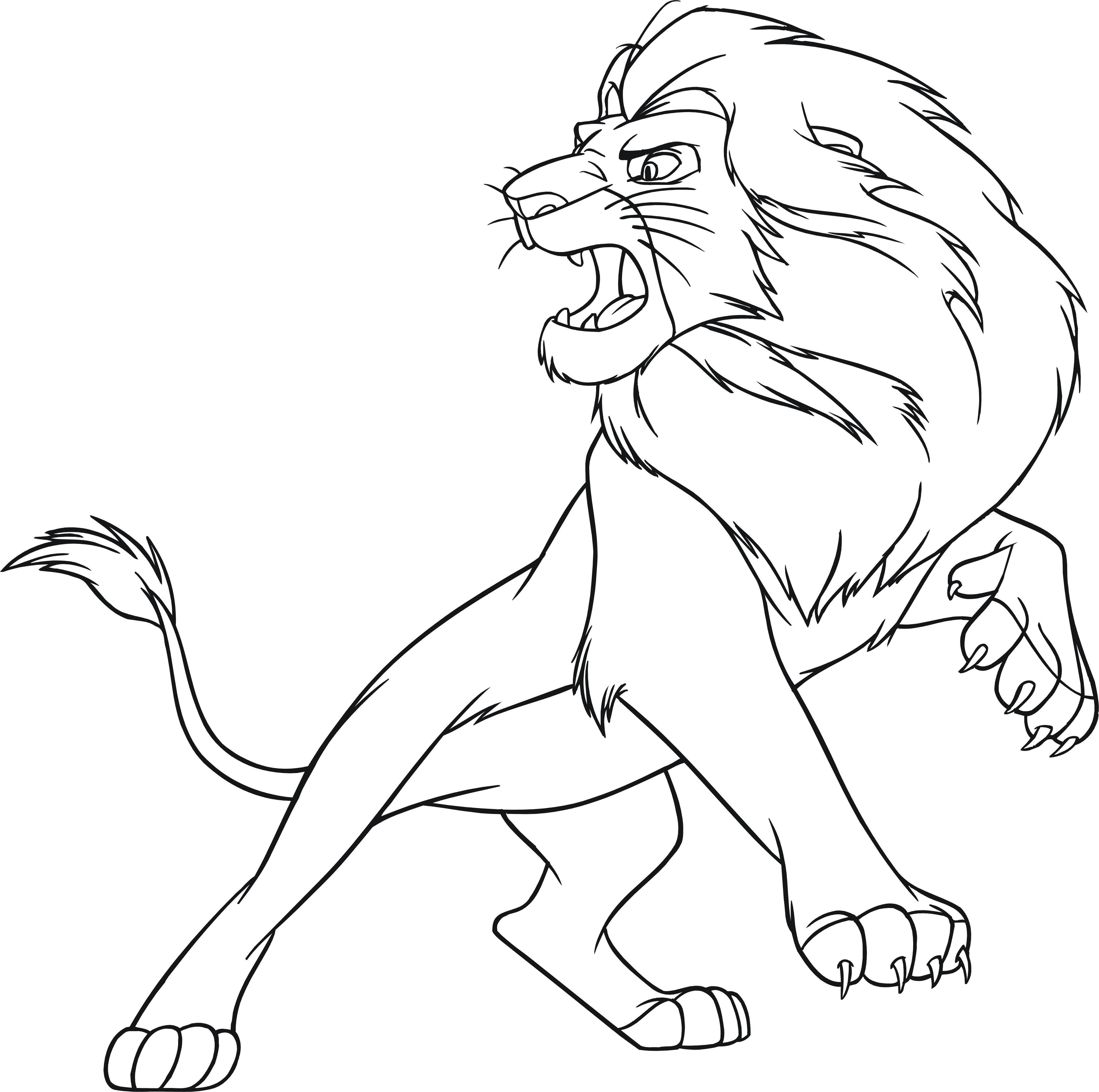 раскраски львы