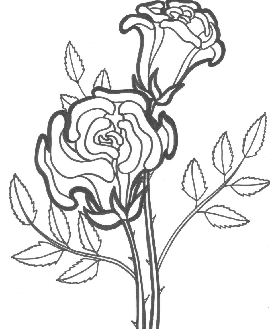 розы раскраски розы раскраски для детей на тему розы цветы