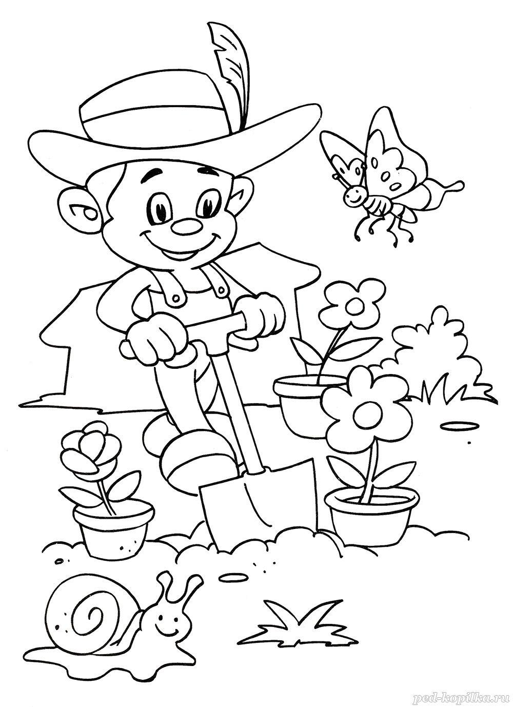 раскраски садовник