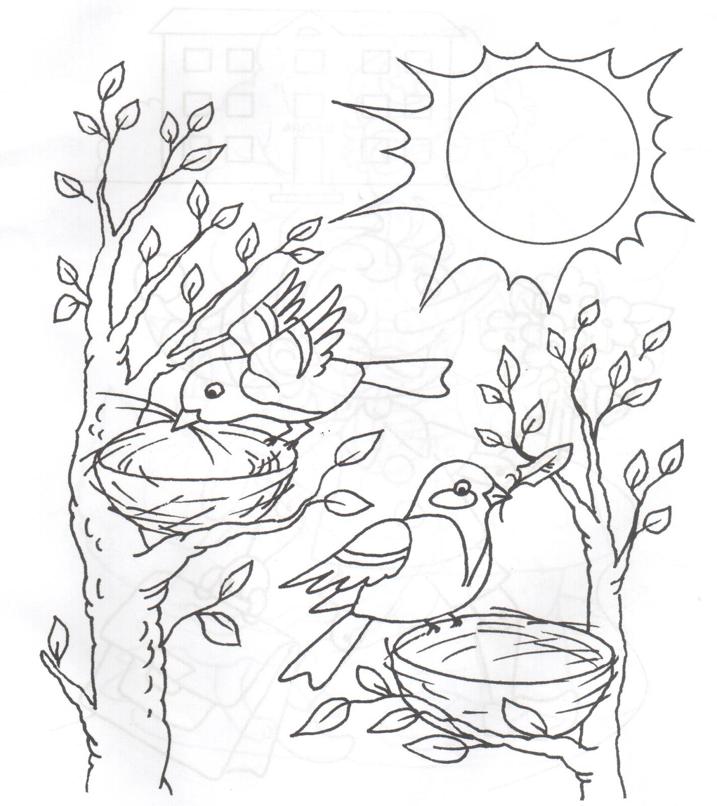 раскраски на тему рисуем птиц