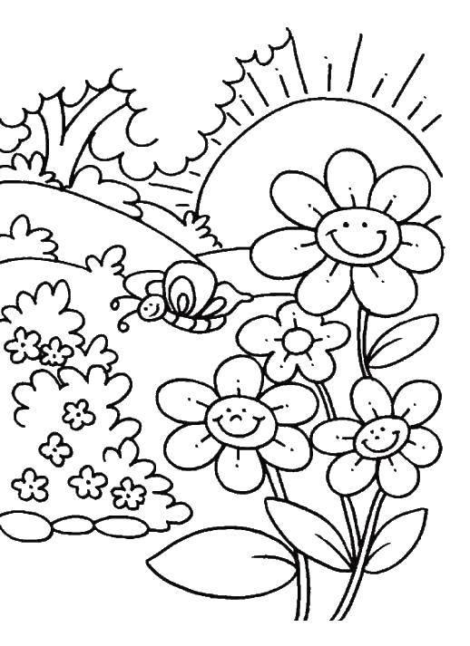 Раскраски степь, равнина, поляна Раскраски степь, равнина, поляна для детей, полевые цветы, степные цветы