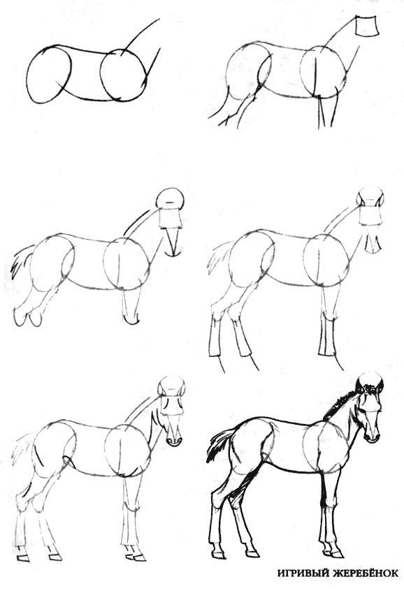 Рисование Уроки по рисованию, поэтапное рисование, задания на уроки рисования. Рисование различных уровней от  самого простого до сложного