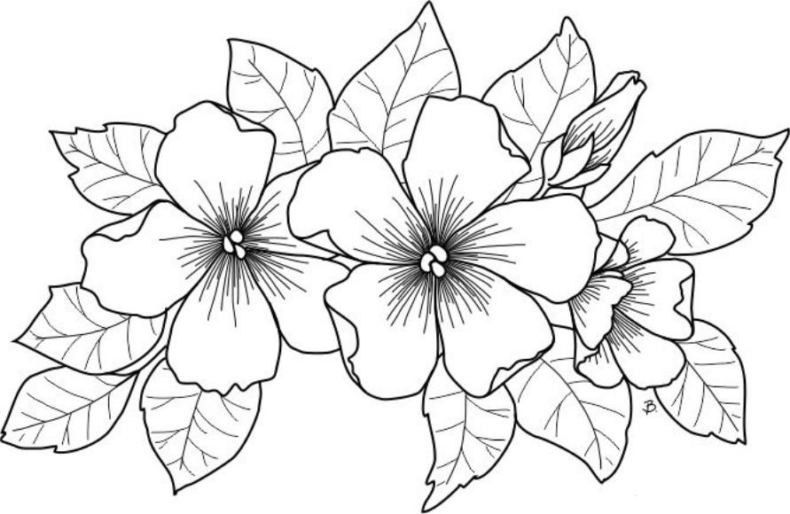Раскраски цветы Раскраски цветы, раскраски для девочек с красивыми цветами на кусту, в вазах, в корзинках.