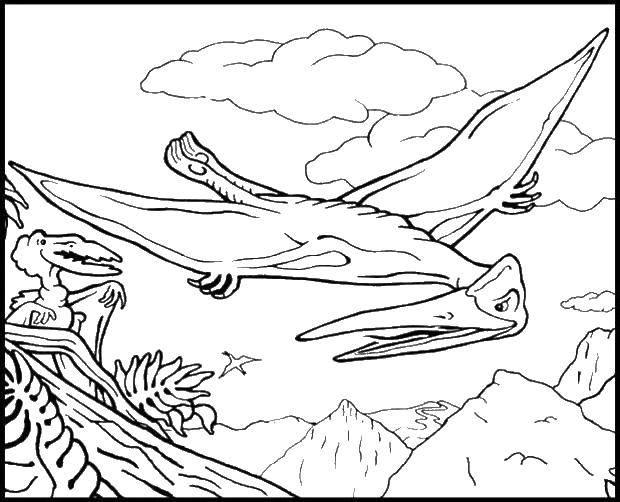 Раскраски Птеродактиль Раскраски Птеродактиль,  Птеранодон, Птерозавр