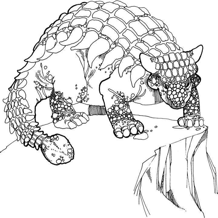 Раскраски Анкилозавр Раскраски Анкилозавр. Раскраски динозавра в брони