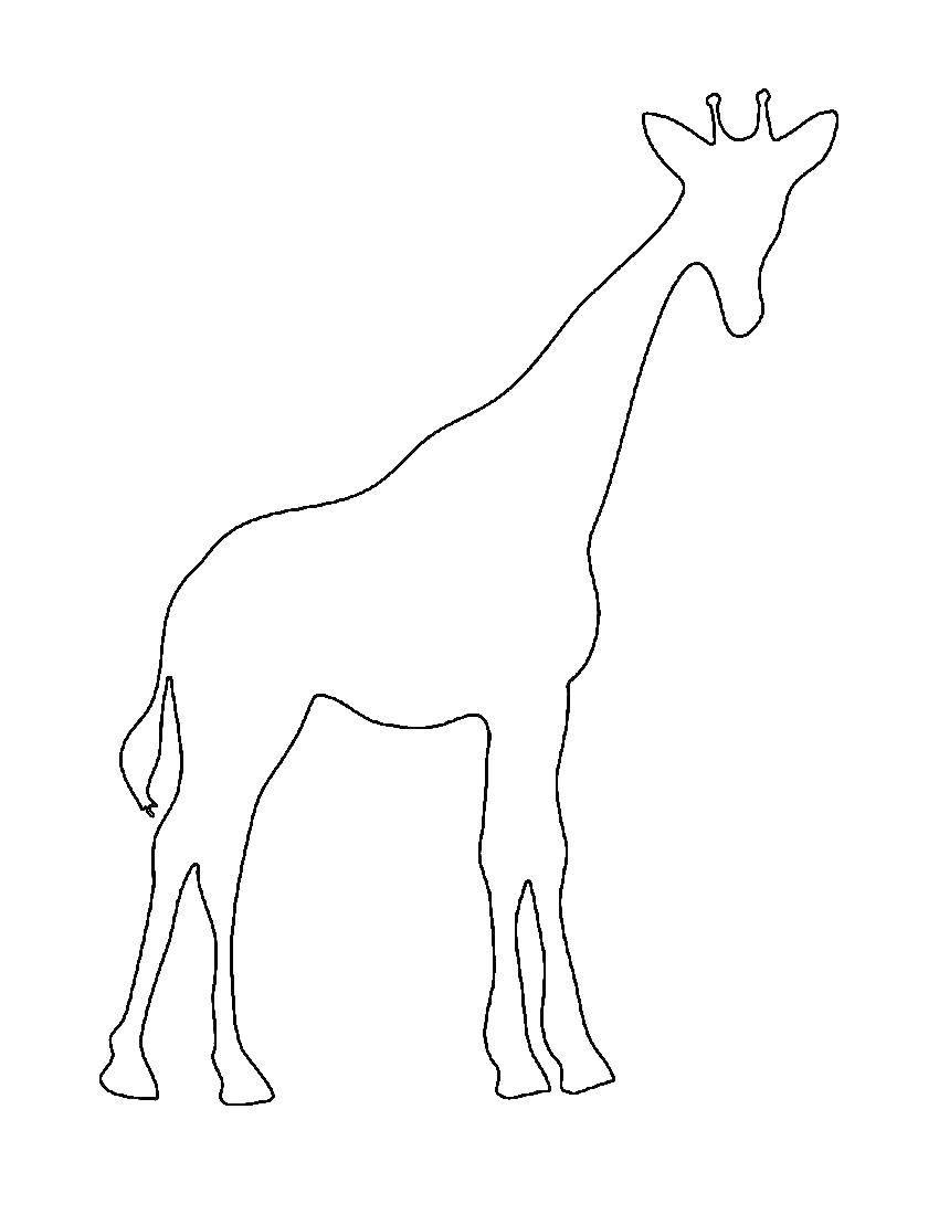 Жирафик Раскраска контур - жираф.