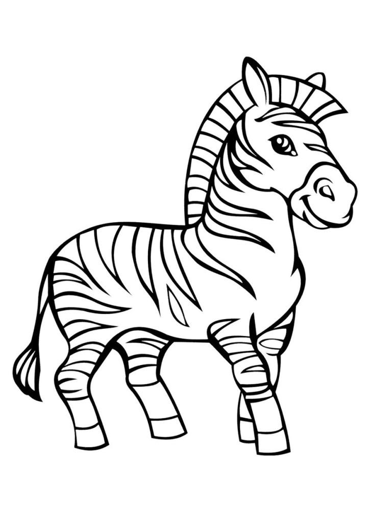 раскраски для детей зебра зебры