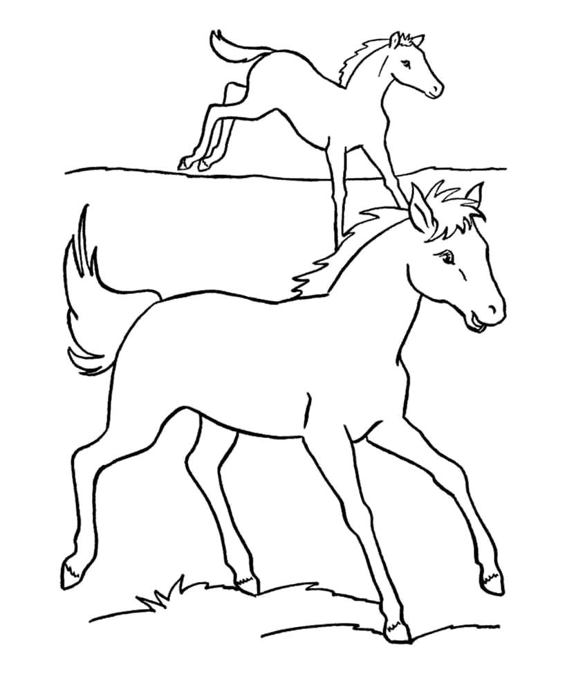 раскраски с лошадьми кобыла жеребенок конь раскраска