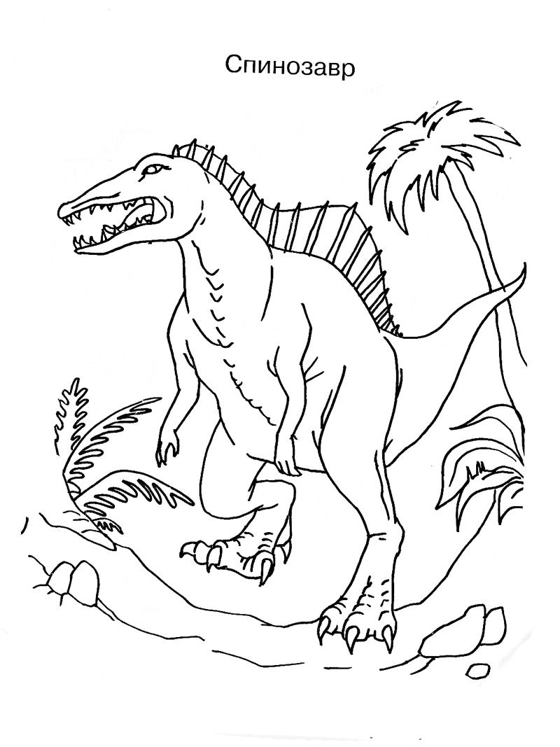 Раскрасить и скачать спинозавра. Раскраски с динозаврами Динозавр спинозавр. Скачать бесплатно. Раскраски про природу.