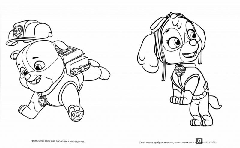 раскраски на тему щенячий патруль
