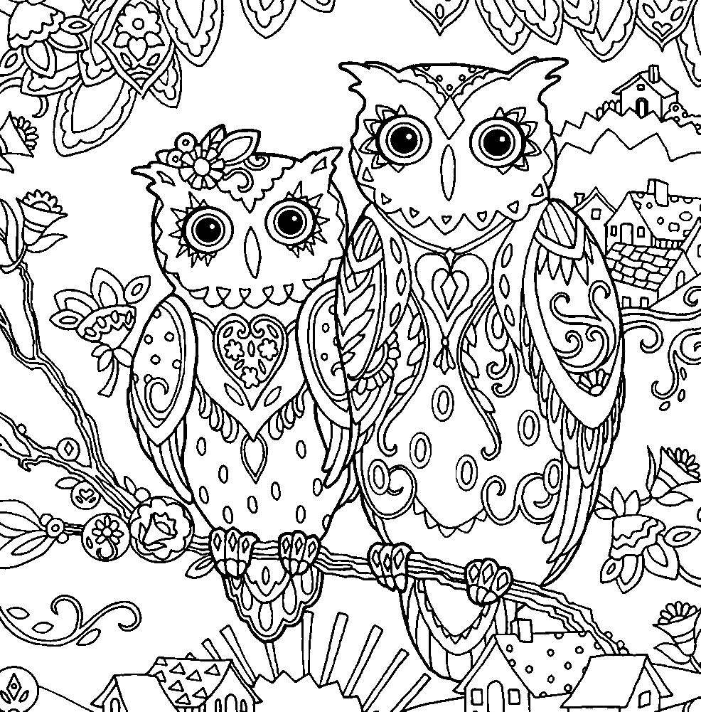 раскраски взрослые онлайн бесплатно раскраски с совушками