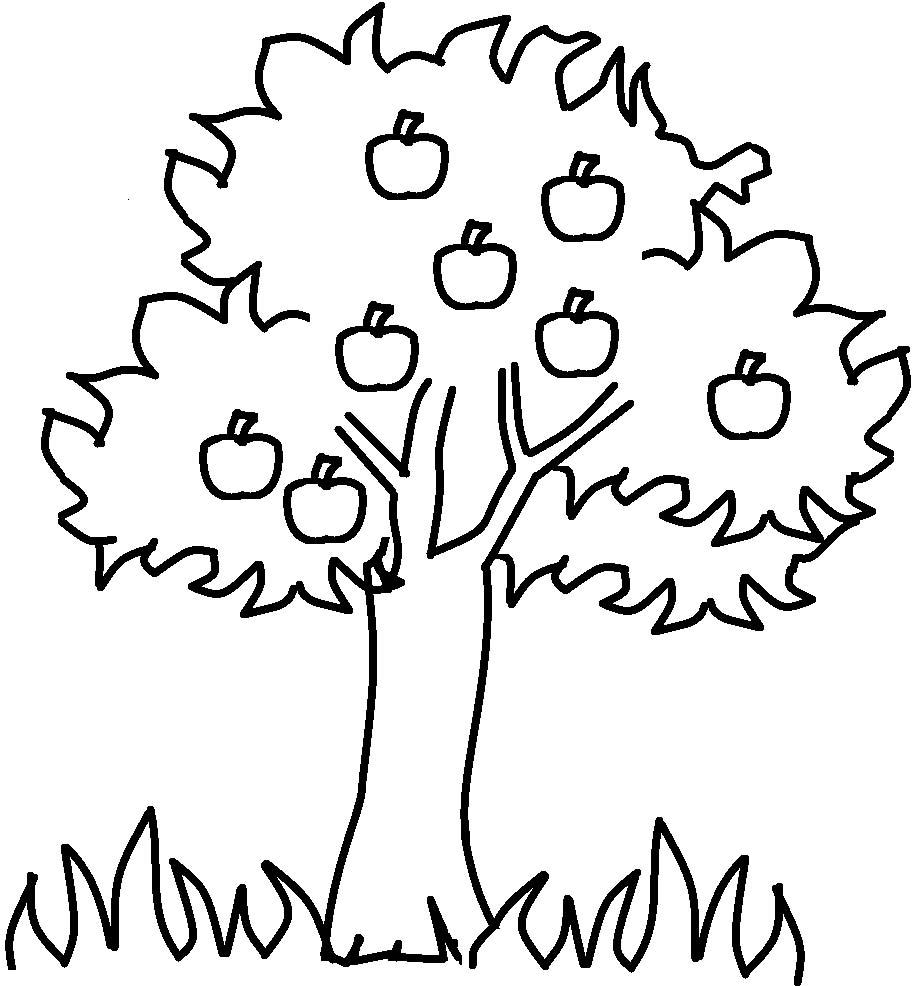 деревья картинки для детей раскраски