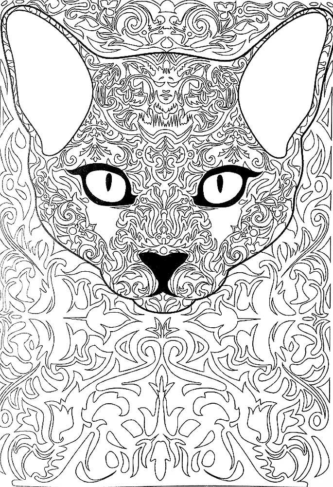 раскраски на тему кошки раскраски антистресс с кошками