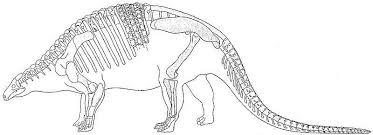 раскраски со скелетом Динозавра          раскраски на тему скелет динозавра для мальчиков и девочек.  раскраски со скелетом динозавров для детей и взрослых