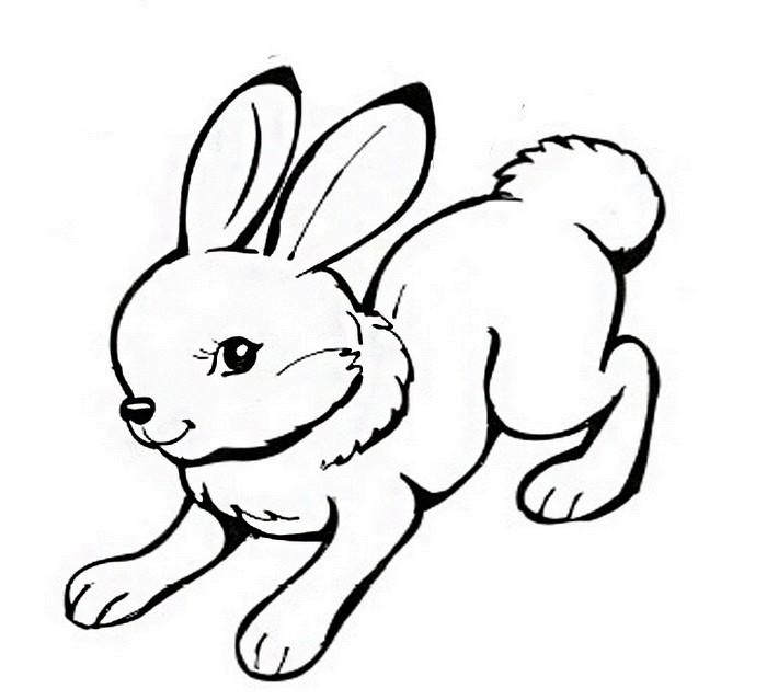 заяц кролик раскраски для детей на тему заяц кролик зайчонок
