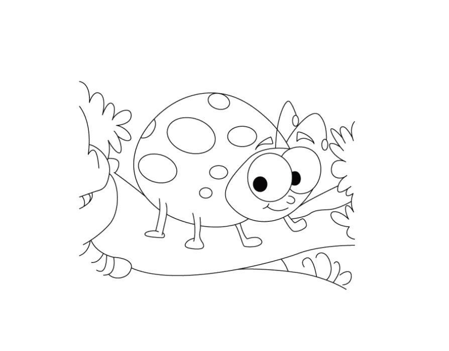 раскраски божья коровка