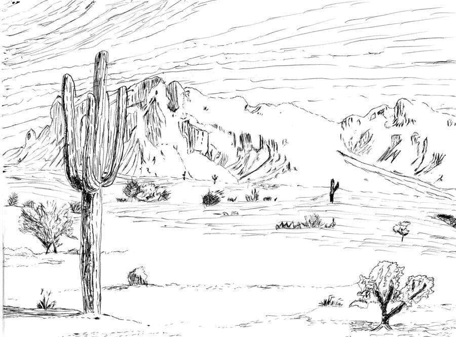 Раскраски пустыня Раскраски пустыня, раскраски с пустыней для малышей