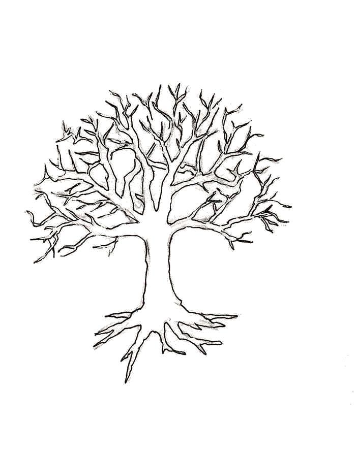 Раскраски контуры растения Раскраски контуры растений, различных деревьев для вырезания
