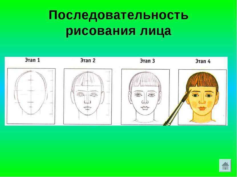 Рисуем человека Как нарисовать человека, поэтапное рисование человека и частей тела человека