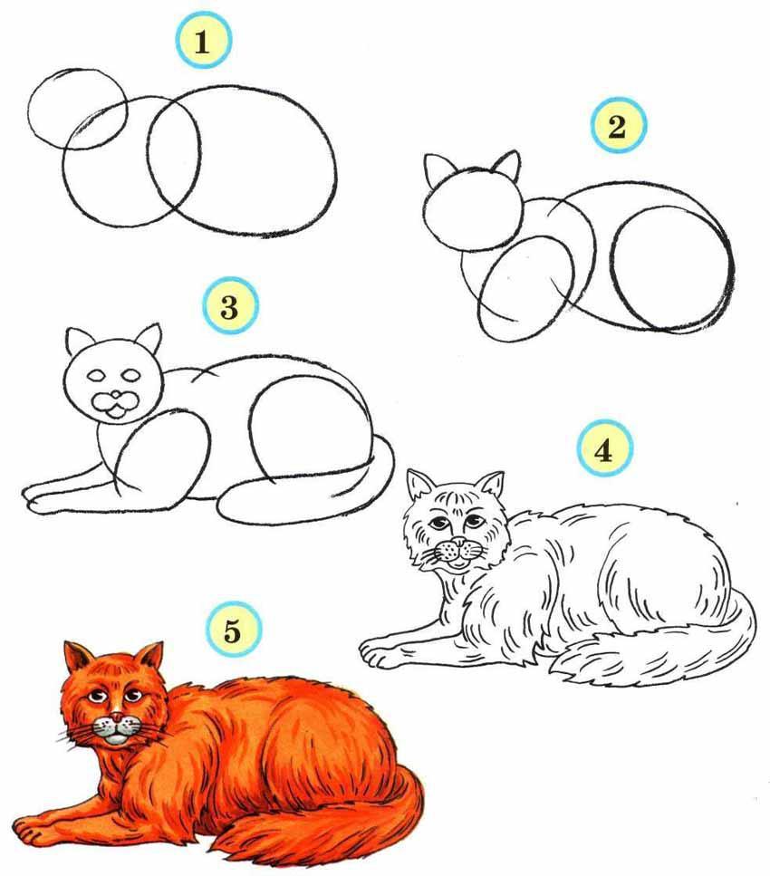 Рисуем животных Рисуем домашних и диких животных. Поэтапное рисование животных от простых до сложных вариантов