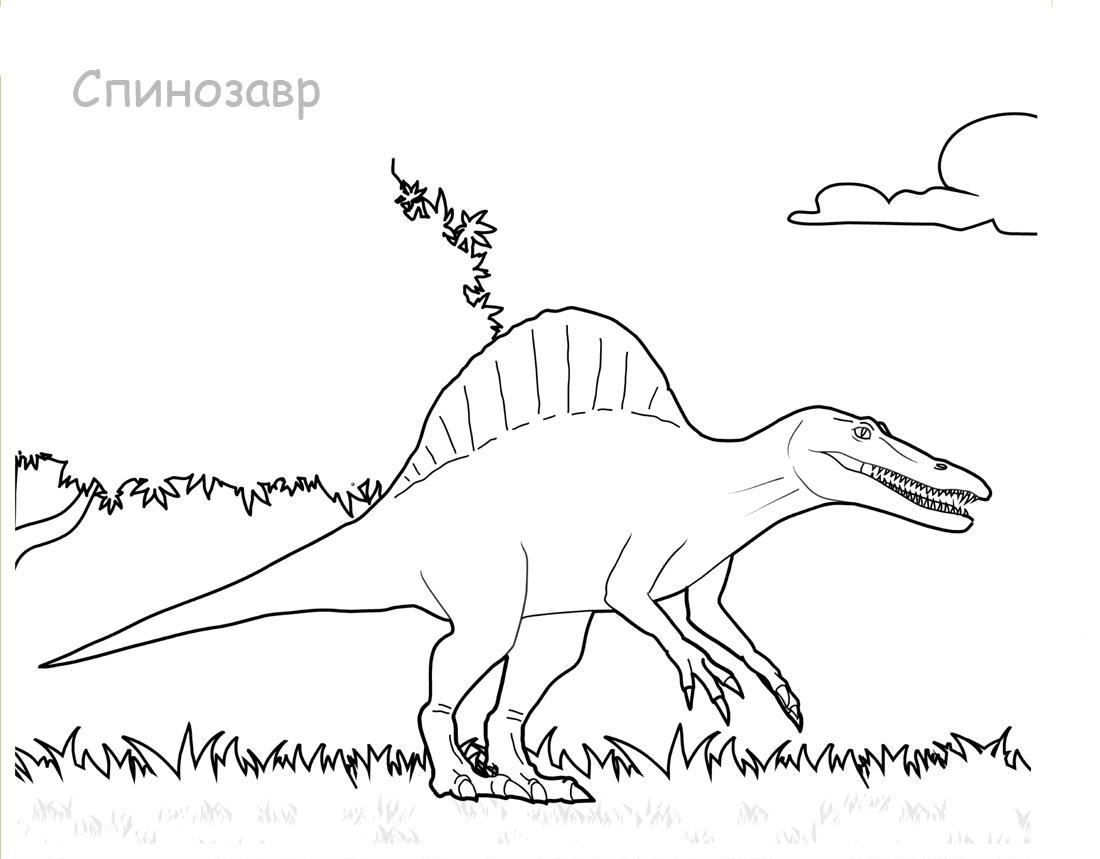 Раскраски Спинозавр Раскраски Спинозавр, раскраски динозавров для школьников