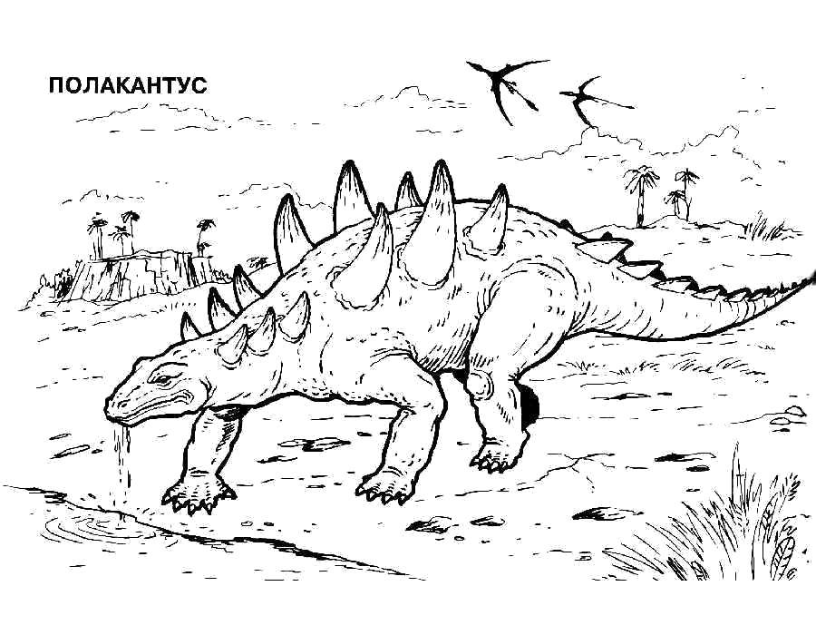 Раскраски Полакантус Раскраски Полакантус, раскраски динозавры с названиями